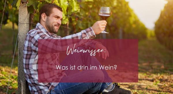 Weinwissen_2