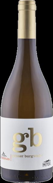 Hensel Höhenflug Grauer Burgunder trocken QbA Pfalz Weißwein | Saffer's WinzerWelt