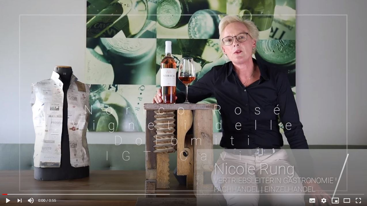 Norico Rosé Vigneti delle Dolomiti IGT Cavit Trentin Roséwein trocken