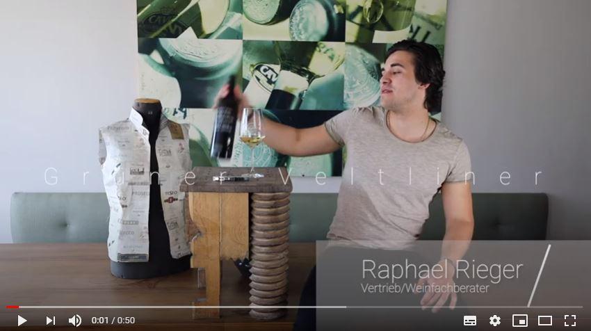 Grüner Veltliner Kamptal DAC Edelbauer Weißwein trocken