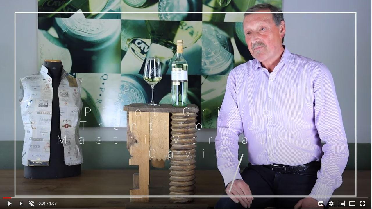 Pinot Grigio Trentino DOC Mastri Vernacoli Cavit Trentin Weißwein trocken