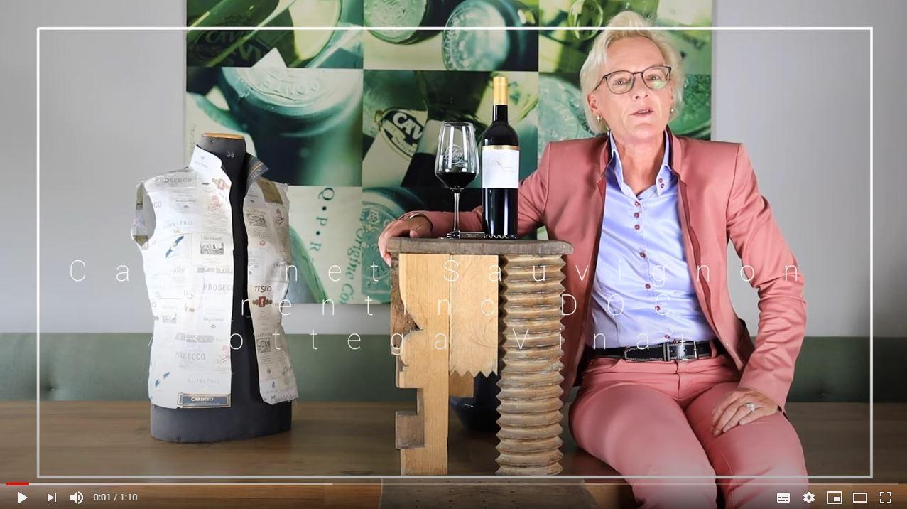 Cabernet Sauvignon Trentino DOC Bottega Vinai Rotwein trocken