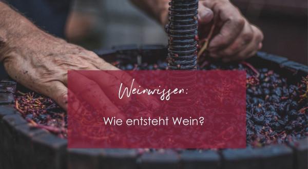 Weinwissen_6