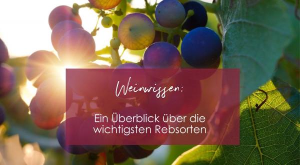 Weinwissen_8