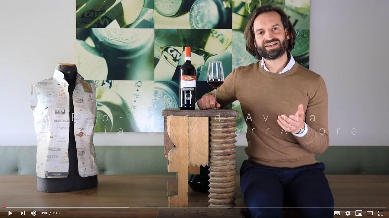 Bio-Nero d´Avola Sicilia DOC TerrAmore Sizilien wein kaufen münchen | Saffer's WinzerWelt