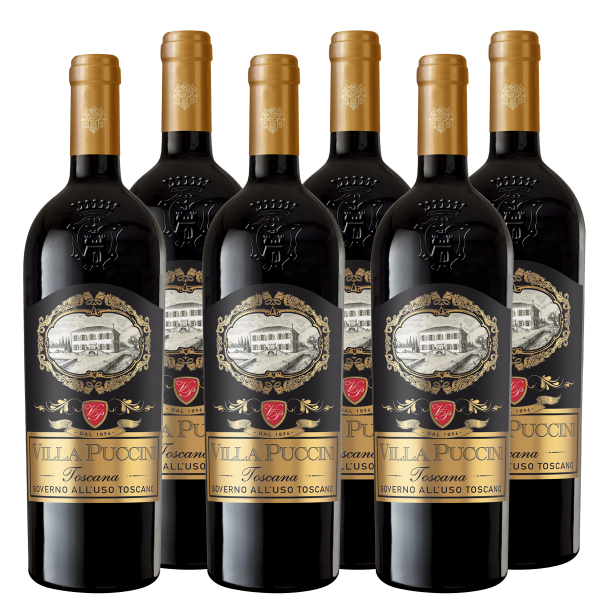 Weinpaket Toscana Governo all´uso toscano IGT Villa Puccini Toskana Rotwein